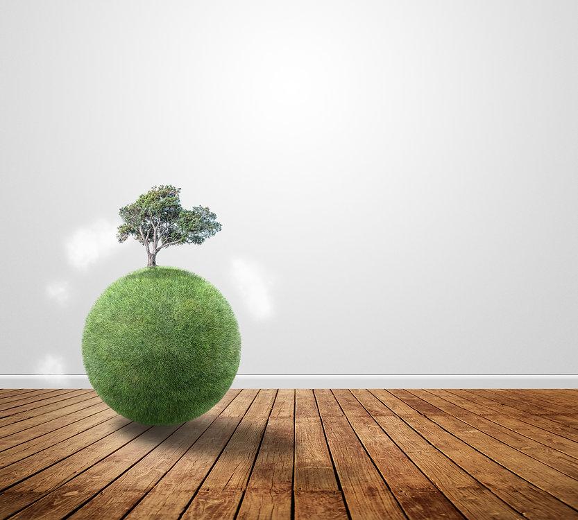 Un mondo sostenibile con 432 healthy zone