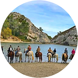 Afbeelding2 paarden.png