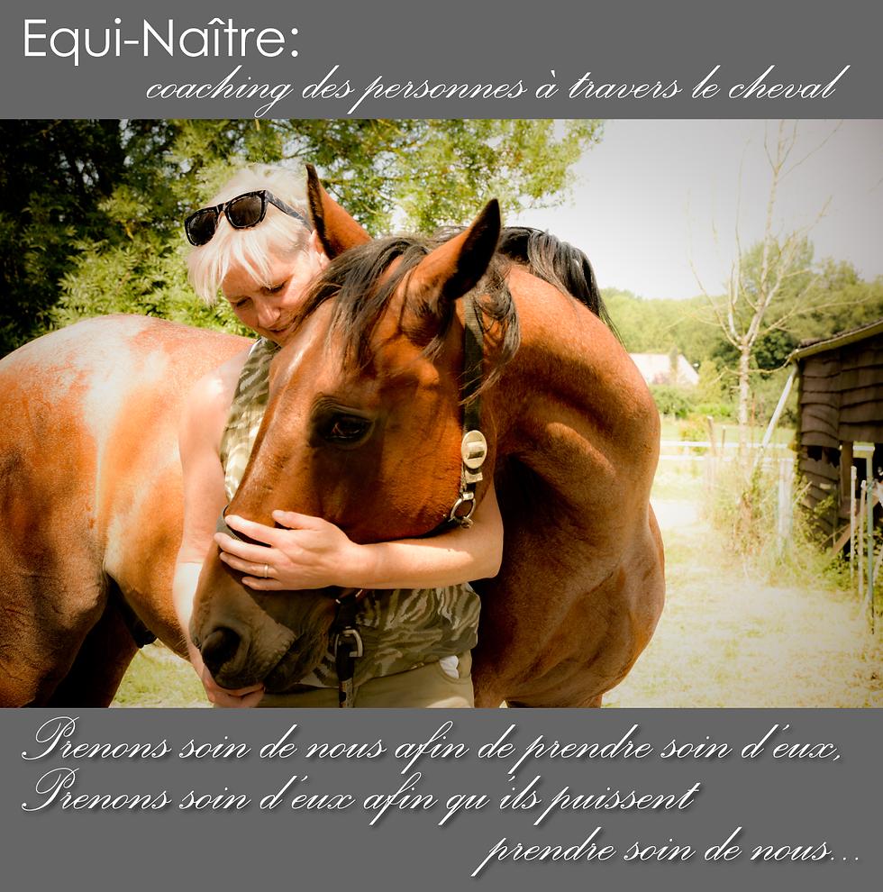 Equi-coaching: Mieux-être facilité par le cheval