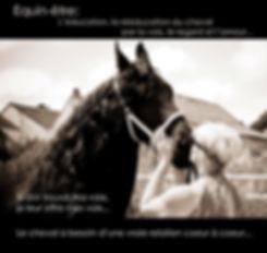 Education positive et bienveillante du cheval