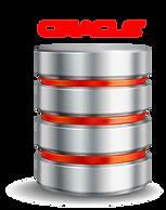 Consute facilmente información de su bases e datos oracle sin nececidad de código