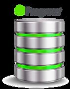 Consute facilmente información de su bases e datos Progress sin nececidad de código