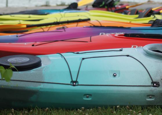 Kayaks Lined Up.JPG