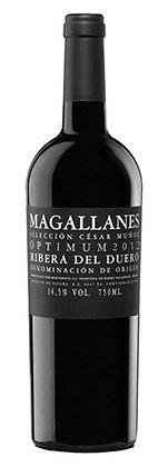 Magallanes Optimum 2014