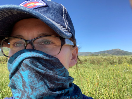 Five Things That Helped Me Travel During COVID-19