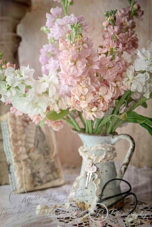 pastel-stock-flowers.jpg