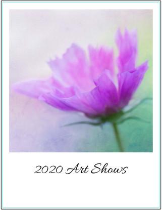 2020 Art Shows
