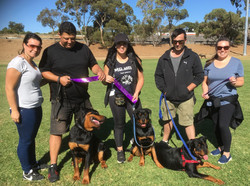 A Rottweiler Family promotion