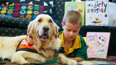 Story Dog Reading Program is recruiting