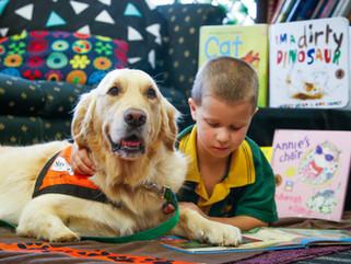 Story Dog Reading Program is recruiting