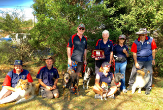 Flyball: T'Keilor Shots win award for 'clean running'