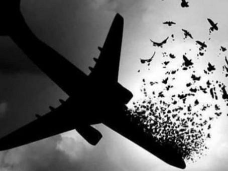 شکایت از ایران و سپاه پاسداران بابت ساقط کردن هواپیمای اکراین ۷۵۲