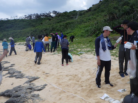 私立高校生物部OB会実習4 海の生きもの&海岸漂着ゴミ