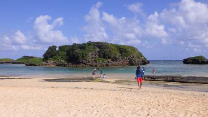 茨城高等学校西表島実習4 サンゴ礁と海岸漂着ゴミ