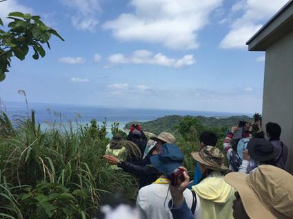 教育旅行 亜熱帯林実習4