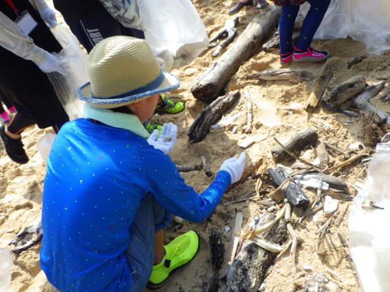海岸漂着ゴミプログラム/小さすぎるゴミ