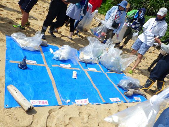 海岸漂着ゴミプログラム/8つに分類
