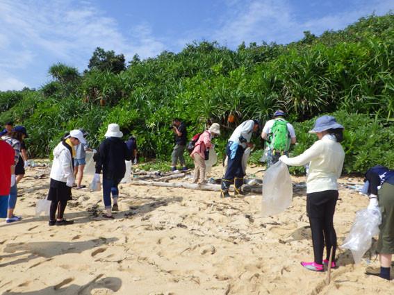 海岸漂着ゴミプログラム/みんなで範囲内のゴミを拾う