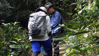 教育旅行 茨城高校亜熱帯林実習2