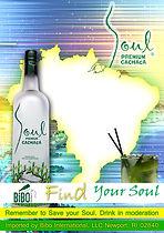 find_your_soul (2).jpg
