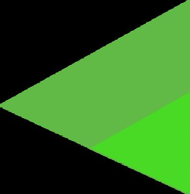 triangulo_header_FMFG_2.png