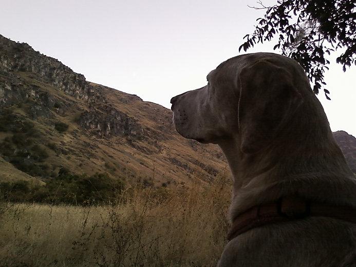 pooh.hells.canyon1.jpg