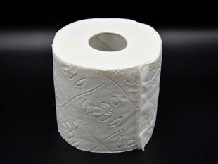 ¿El papel higiénico usado se debe echar por el inodoro o en un tacho de basura?