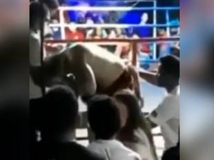 Tragedia en Brasil: un boxeador murió tras ser noqueado en un combate clandestino