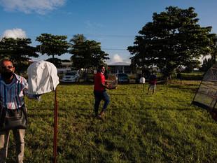 Duelo de trinos: la batalla por el campeonato de pájaros cantores de Surinam