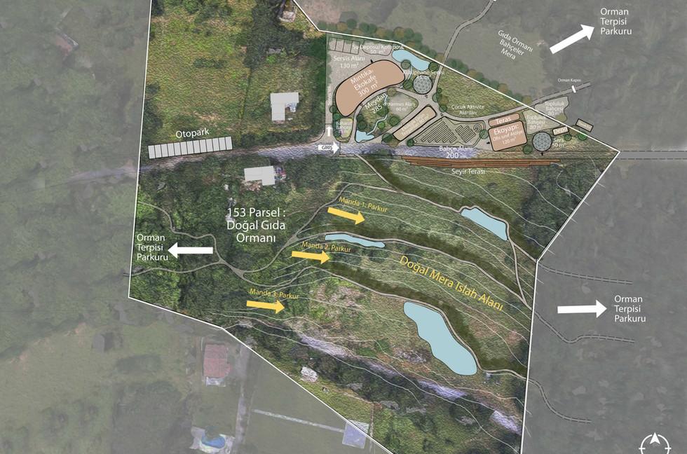 Permakültür Tasarımı Vaziyet Planı