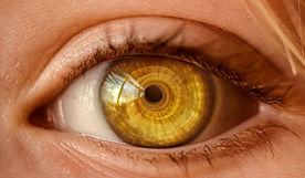 beautiful-close-up-eye-326536.jpg