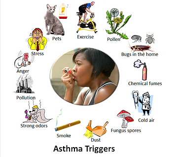 Asthma_triggers_2.PNG