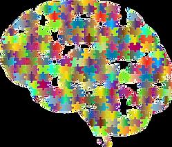 brain-2750453_960_720.png