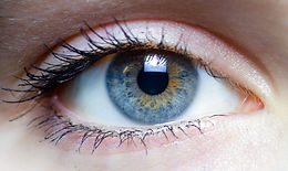 Iris_-_left_eye_of_a_girl.jpg