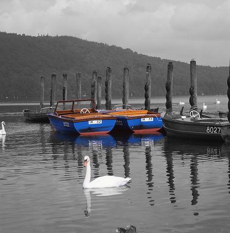 _Lake Windermere 2.jpg