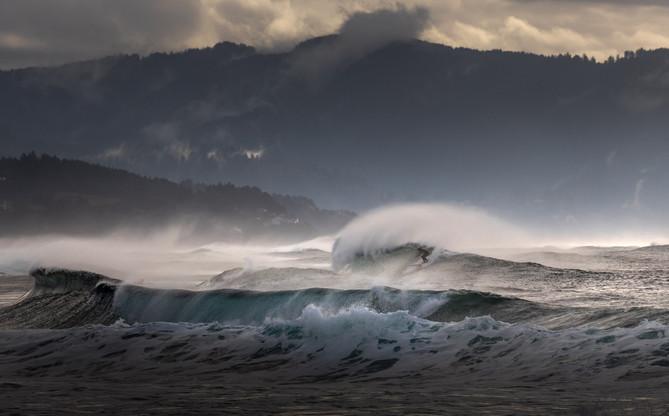 Winer Surf