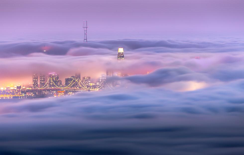 Fog City