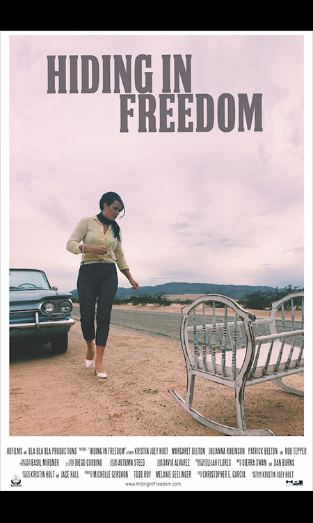 Hiding In Freedom Cover Art