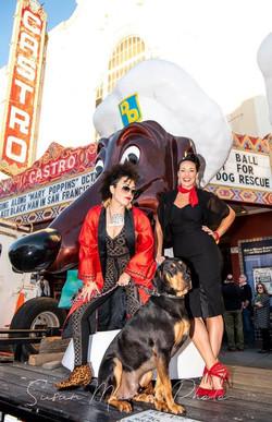 Rocket Dog Rescue Benefit 2019