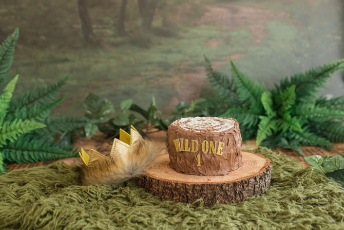 Where The Wild Things Are | Cake Smash