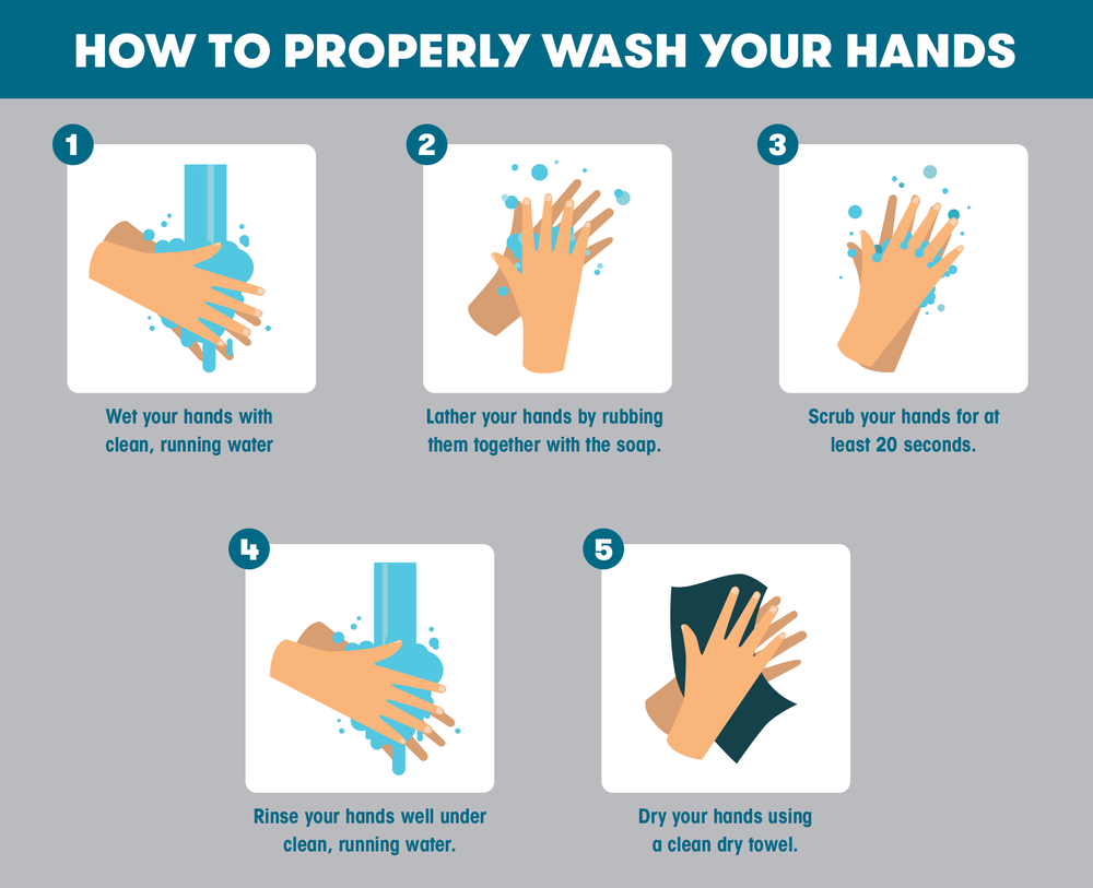 Xyy5gqc9toytpm The original size of the image is 2222 × 2397 px and the original resolution is 300 dpi. https www indianahandtoshoulder com post how to properly wash your hands