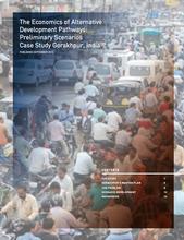 The Economics of Alternative Development