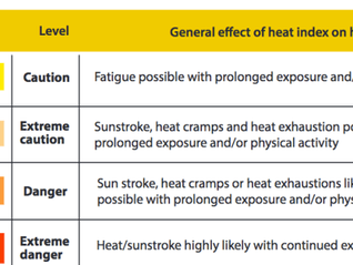 Occupational Heat Stress and Climate Change in Da Nang