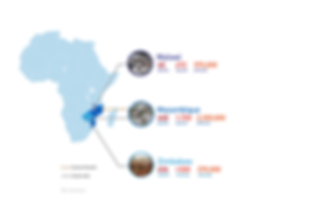 Malawi Zimbabwe Mozambique map website-0