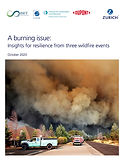 A burning issue:  Insights for resilience from three wildfire events