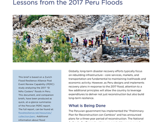 Presenting the Zurich Flood Resilience Alliance, Phase 2