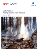 California wildfires: Building resilience from the ashes