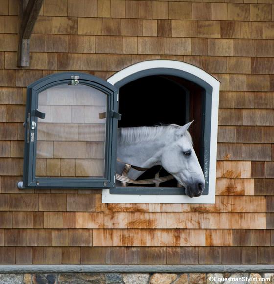 Whitehorseoldsalem72.jpg