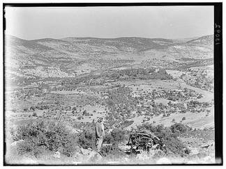 منظر لبلدة عجلون في الأربعينيات من القرن العشرين
