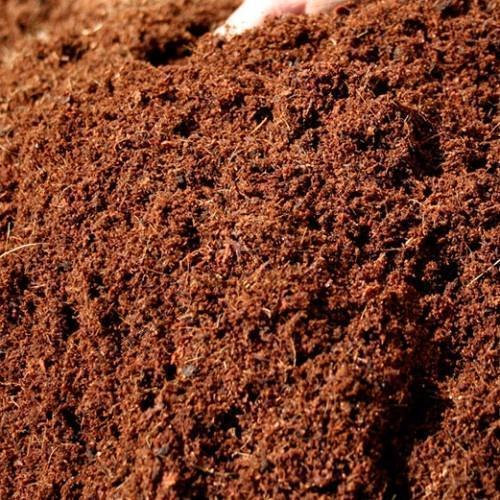 Coco Coir Finely Ground